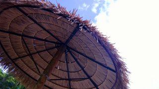 ハワイ6日目・コオリナ最終日。ギリギリまでコオリナで。そしてワイキキ移動 <コオリナログ9>